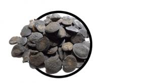 Coconut Black, composizione, funziona, come si usa, ingredienti