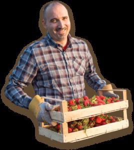 Home Berry Box, effetti collaterali, controindicazioni