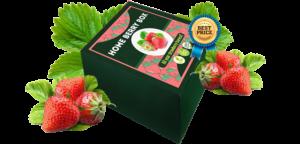 Home Berry Box, recensioni, opinioni, in farmacia, funziona, prezzo