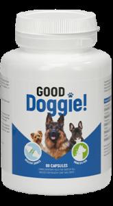 Good Doggie, recensioni, forum, opinioni